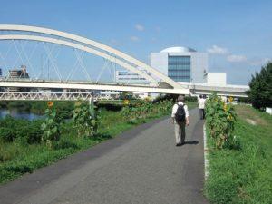 河川敷と散歩