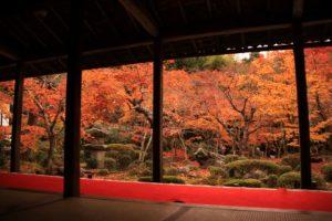 お寺からの紅葉