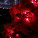 クリスマスの明かり