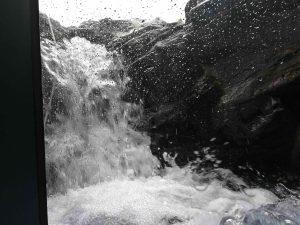 マリホ水族館渓流